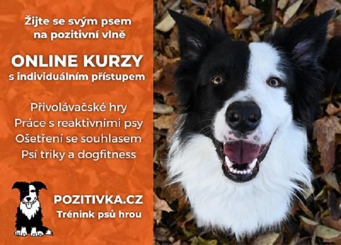 Reklamapozitivkadoknihy-barevné-finalrtxt17239.jpg