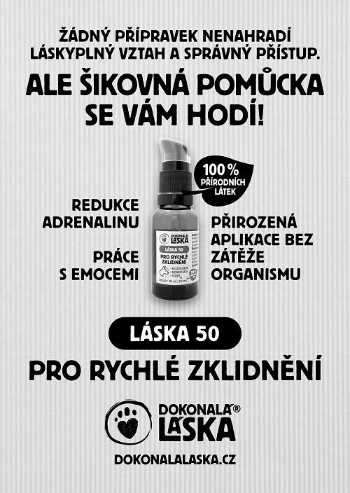 dokonala_laska_na_webrtxt17235.jpg